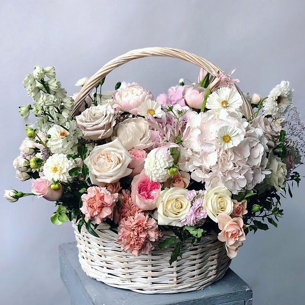Лаванды зачем, корзины цветы доставка москва недорого